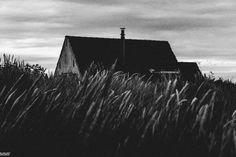 Black&White Zeeland / Black&White   Mmf-fotografie.nl