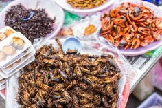 Crickets and other edible insects are delicious, environmentally sound and high in nutritional value.