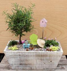 fairy garden in a box ~ too cute