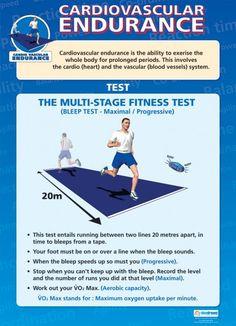 Cardiovascular Endurance Poster