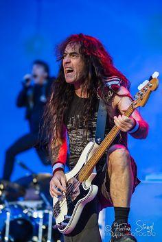 Steve Harris - Iron Maiden bass player