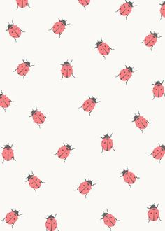 iPhone 5 Wallpaper - Lady Bugs