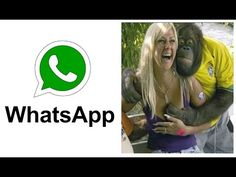 मजेदार और अंतिम विफल | पशु नवीनतम Whatsapp मजेदार वीडियो संकलन - YouTube Funny Whatsapp Videos, Latest Video, Viral Videos, Music, Youtube, Musica, Musik, Muziek, Music Activities