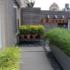 Option: Potted plants raised above rocks (from Gardenista)