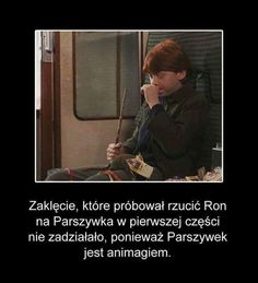 Read from the story Ciekawostki o Harrym Potterze Words To Describe Yourself, Everything And Nothing, Harry Potter Memes, Draco Malfoy, Life Humor, Fantastic Beasts, Mind Blown, Hogwarts, Fandom