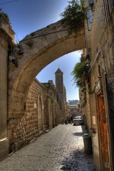 Would love to visit the Holy Land with a guide who is also a Biblical scholar.
