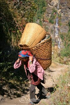 """Sherpa people, meaning """"eastern people"""" in Nepali, are an ethnic group at Tibet-Nepal Border. The word Sherpa often conjures up images of assistants helping western climbers reach the top of Mount Everest. Everest Mountain, Le Tibet, North Asia, Himalaya, Mountain Paintings, Bhutan, People Of The World, Women Life, Earth"""