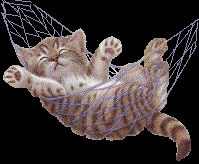 Ruth Morehead Designs | ... designed by Ruth Morehead of a little orange kitty with a mouse