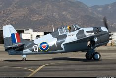 Grumman (General Motors) FM-2 Wildcat - Untitled (Commemorative Air Force) | Aviation Photo #2421545 | Airliners.net