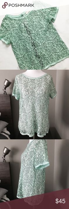 LOFT Floral Lace Back-Zip Top Gorgeous floral Lace top from LOFT. Minty teal color. Back zip detail. So pretty! Size XS. Great condition, no flaws to note. LOFT Tops Blouses