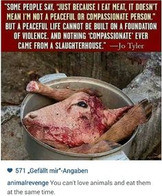This is what we do to our fellow creatures.. How peaceful do you think it is? Yet.. Animal rights advocates are sent to jail for terrorism..