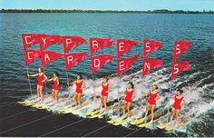 Cypress Gardens, Florida - Sunshine Girls Water-Skiing :Old Antique Vintage Photograph Photo *Reproduction* Old Florida, Vintage Florida, Central Florida, Cypress Gardens Florida, Florida Images, Winter Haven, Old Antiques, Vintage Photographs, Vintage Prints