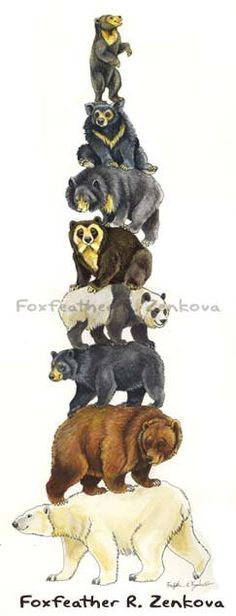 Sunbear Stuffed Animal, 70 Sun Bear Ideas Bear Bear Art Bear Illustration