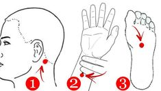 Stimulează aceste puncte ca să elimini durerile din organism Trigger Points, Reflexology, Snoopy, Youtube, Mudra, Sport, Healthy, Medicine, Massage