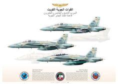 KUWAIT AIR FORCE - القوات الجوية الكويت 9 & 25 Fighter & Attack Squadron Ahmed al Jaber Air Base  KAF-18C Kuwait Air Force القوات الجوية الكويت JP-1136