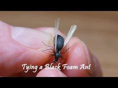 (430) Tying a Black Foam Ant by William Ensiferum - YouTube
