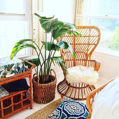 Combine great design, plenty of light, and some beautiful flora and you have a @justinablakeney signature space. @bungalowandbreakfast can you hold us a room? #justinaforloloi #jungalowstyle