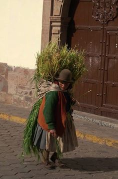 Perú wish I were there to lend a hand.