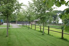 siebers-tuinprojecten-Boederij-landelijk-tuin-oprijlaan-paarden.JPG