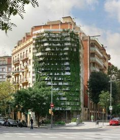 """Green Side Wall"" - 'vegitecture' in Barcelona"