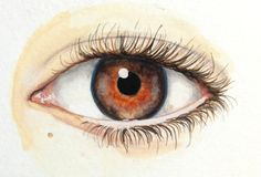 Eye Painting Custom Eye Portrait Original door ashleywhitejacobsen
