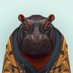 HIPPO by Yago Partal  for ZOO PORTRAITS