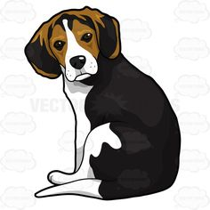 Beagle Puppy Sitting And Looking Back | Stock Cartoon Graphics ...