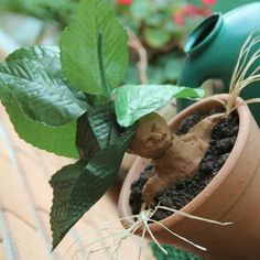 Pin for Later: 22 Easy Harry Potter DIYs That Even Muggles Can Make Make Your Own Mandrakes Potter-ify your decor by putting a few of these hilarious mandrake plants around the house. There are plenty of easy ways to make them!