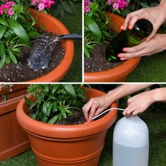 Plant Hacks 3 simple ways to keep your plant hydrated. plant hacks video you will enjoy - plant hack Modern Plant Stand, Diy Plant Stand, Indoor Plant Stands, Container Gardening Vegetables, Vegetable Garden, Growing Vegetables, Growing Plants, Gemüseanbau In Kübeln, Self Watering Plants