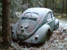 VW bug left to die ~ sad :(