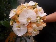 orquidea phal astromelia branca rosa cha ( versilia )