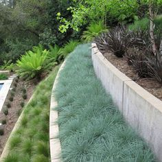 Love the greens in this terrace. Link leads to many more pics