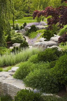 Edmund Hollander Landscape Architects | On The Bluff