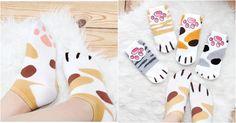 Des chaussettes pattes de chat | Topito