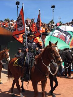 Police horses and 2010 and 2012 flags....