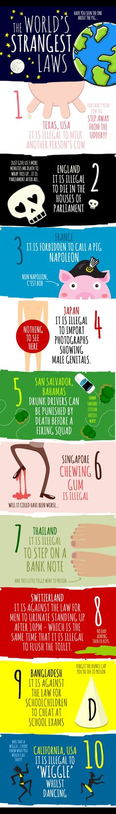 INFOGRAPHIC: The World's Strangest Laws