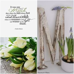 Marzo Archivi - Charme and Those Days, Spring Time, Asparagus, Winter, Flowers, Fresh Start, Collages, Life, March
