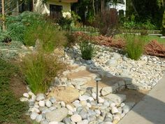 Beautiful ideas for landscaping with ornamental grasses used as an informal grass hedge, mass planted in the garden, or mixed with other shrubs and plants. Landscaping With Rocks, Backyard Landscaping, Landscaping Ideas, Patio Ideas, Backyard Ideas, River Rock Patio, River Rocks, Dry River, Courtyards