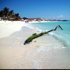 Playa Del Carmen, Riviera Maya @ Riu Place Resort