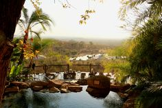 Enjoy a cocktail and a refreshing swim in the lovely Victoria Falls Safari Lodge pool overlooking the waterhole.