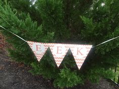 Monster Bash - EEK Pennant Flag Pennant Flags, Scary Monsters, Monster Party, Garden Tools, Yard Tools