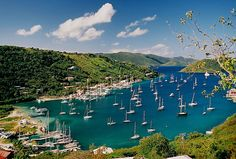 Tortola, British Virgin Islands, Caribbean. All I can think about every day