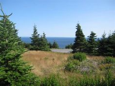 Lots and Land for Sale in Kingston, Newfoundland and Labrador $49,500 Newfoundland And Labrador, Land For Sale, Kingston, Cabins, Mountains, Nature, Travel, Naturaleza, Viajes