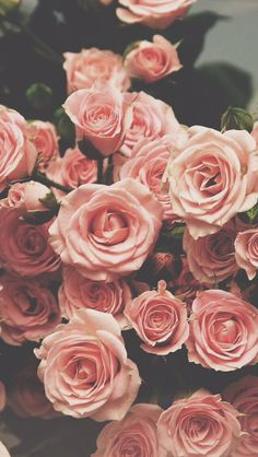 Image shared by princess. Find images and videos about flowers, wallpaper and rose on We Heart It - the app to get lost in what you love.