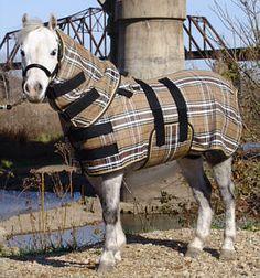 11 Best Miniature Horse Fleece Blankets