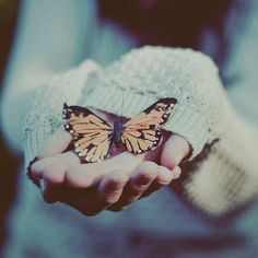 """I only ask to be free, the butterflies are free."" — Charles Dickens"