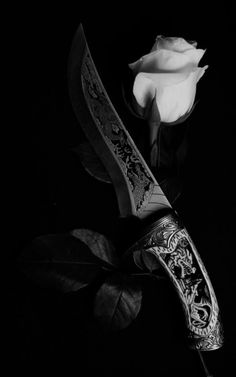 Knife Aesthetic, Book Aesthetic, Character Aesthetic, Aesthetic Pictures, Pretty Knives, Black And White Aesthetic, Dark Photography, The Villain, Dark Fantasy