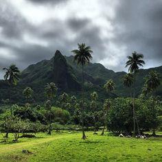 raiatea,  french polynesia...