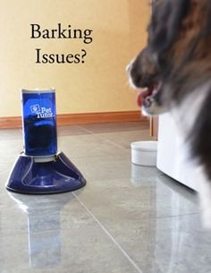 TD talks about using the Pet Tutor® from Smart Technology for Positive Training for such issues as excessive barking