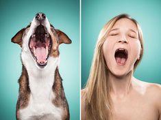 """#ZapWebNaevia Dicen que los perros se parecen a sus dueños. Nosotros creemos que cuando elegimos a nuestro compañero de cuatro patas nos dejamos influir por cierto efecto """"espejo"""". ¿Acaso nuestro perro no es un reflejo de lo que nosotros mismo somos? ¡Muéstrame a tu perro y te diré quien eres!  Este reportaje lo ejemplifica gráficamente."""